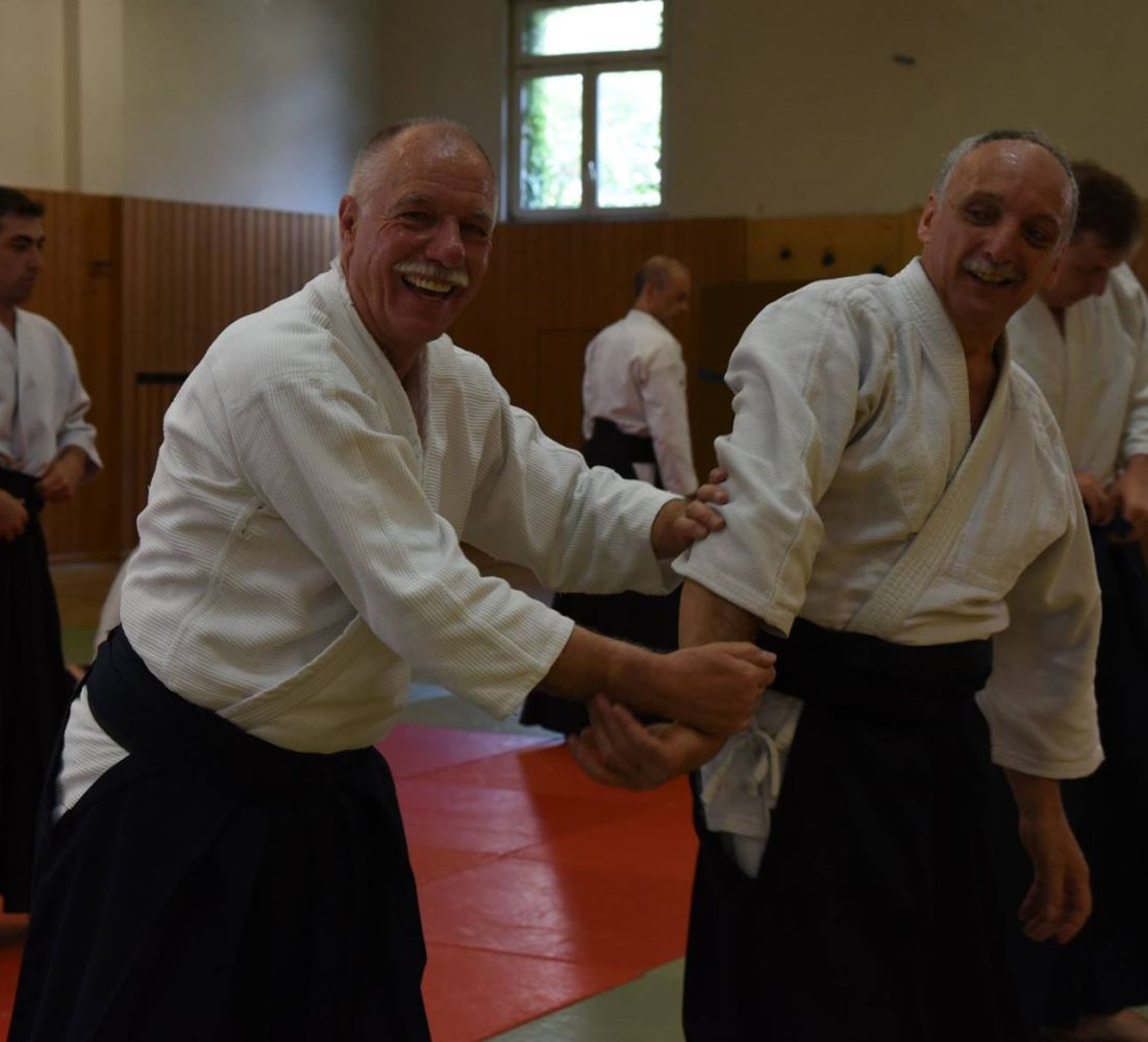 Nebi Vural Frankfurt Seminar June 2018