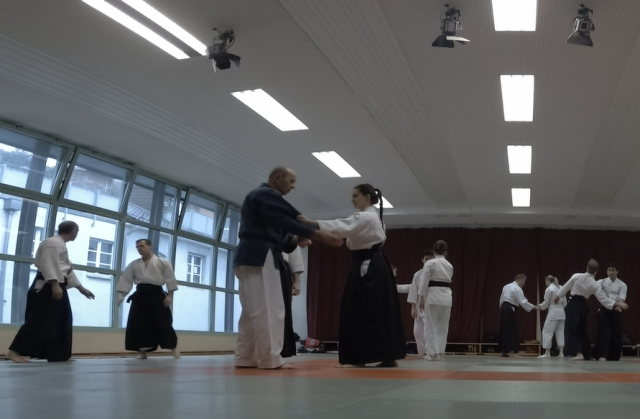 Nebi Vural Frankfurt Seminar February 2019