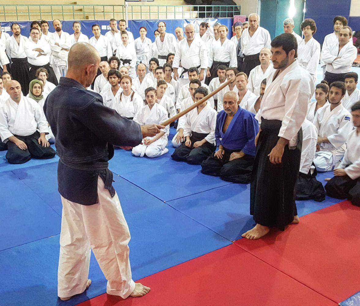 8th International Aikido Festival