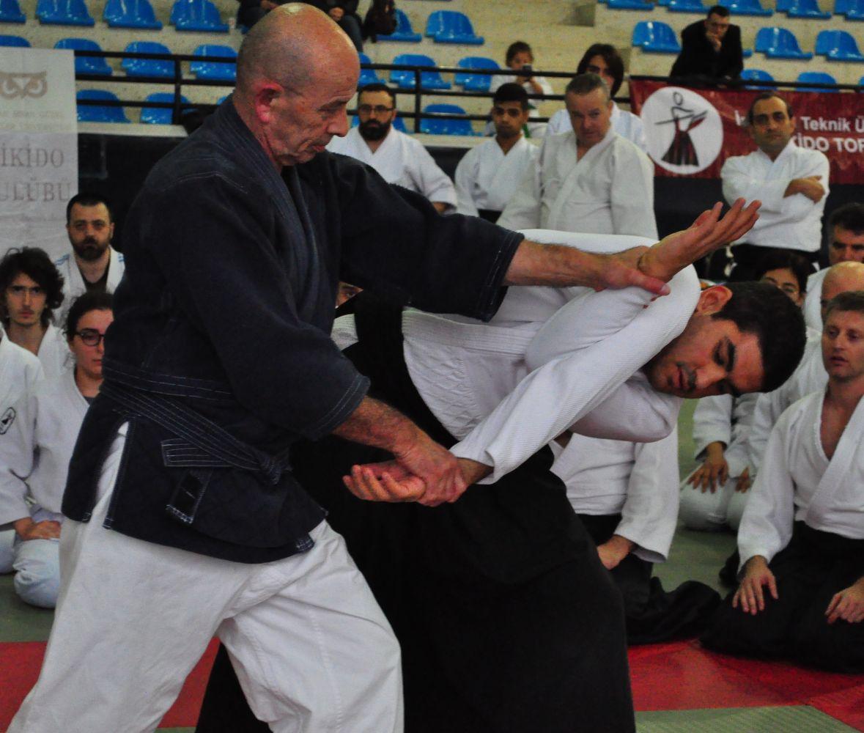 Nebi Vural Istanbul Seminar February 2019