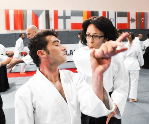 2019 International Aikido Festival