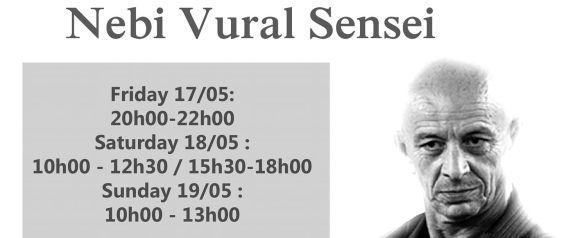 2019 Nebi Vural Brussels Seminar