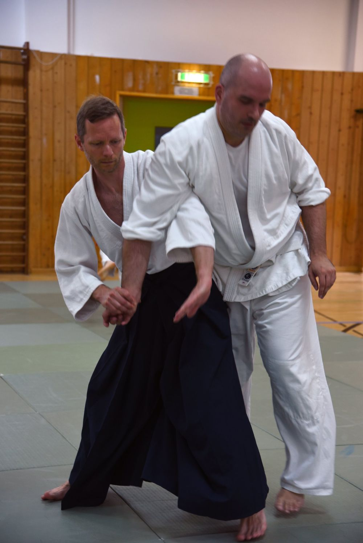 Nebi Vural Frankfurt Seminar June 2019