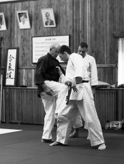 2019 Nebi Vural Kropyvnytskyi Aikido Camp